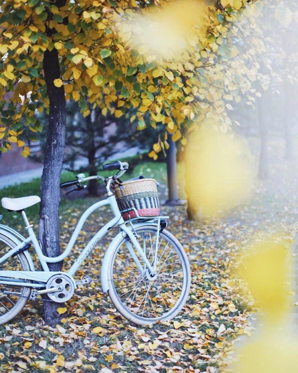 美式经典城市自行车