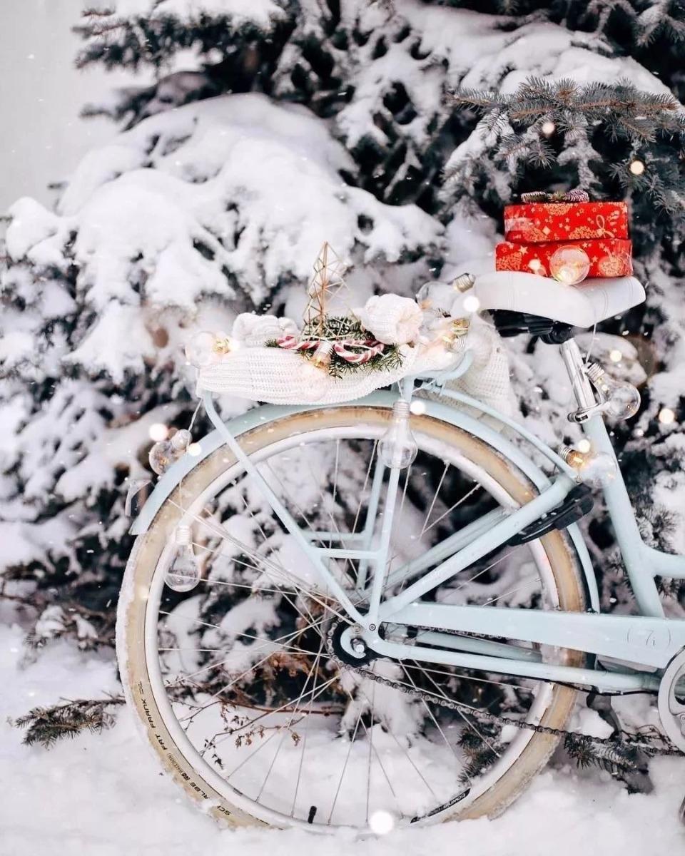城市休闲自行车